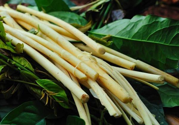 6 đặc sản ăn một lần nhớ mãi ở Bình Phước - ảnh 5