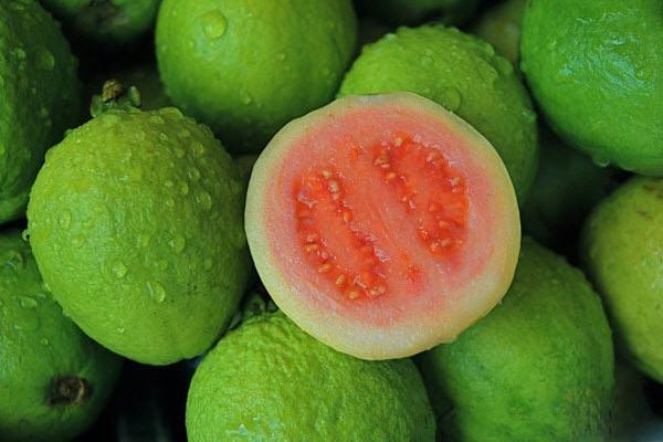 Ổi chứa hàm lượng vitamin C cao gấp 4, 5 lần cam, giúp ngăn ngừa rụng tóc hữu hiệu.