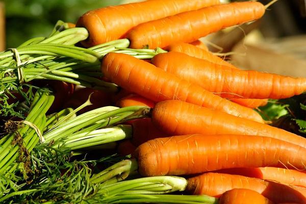 Cà rốt giàu vitamin A, có khả năng có thể khiến cho quá trình phân hủy elastin và collagen chậm lại và bảo vệ da khỏi sự lão hóa.