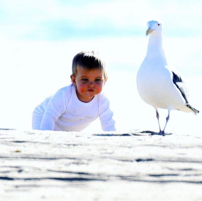 Cô bé kháu khỉnh vui đùa trên bãi biển Malibu, California.
