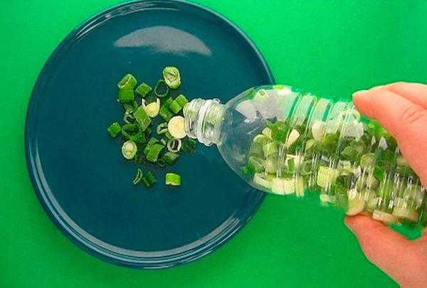 Hành lá. Bạn có thể đựnghành lá đã cắt nhỏ trong chai nhựa rồi cấp đông. Sau khi được rã đông, hành sẽ vẫn tươi như hôm bạn mới mua ngoài chợ về.