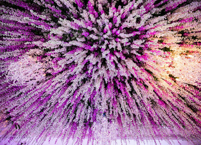 Những dải hoa tử đằng xen kẽ ba màu trắng, hồng, tím tạo khối như một thác hoa đổ từ trên cao xuống.