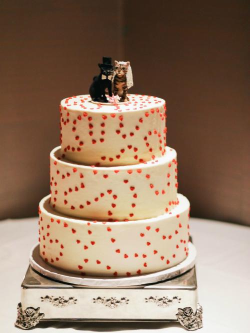 Harley và Ross đặt bánh cưới với phần trang trí mô phỏng hình ảnh của mèo Mo và Tarzan,rất nhiều trái tim nhỏ xinh bắt chước hoạ tiết của chiếc váy HVN mà những phù dâu đã mặc.