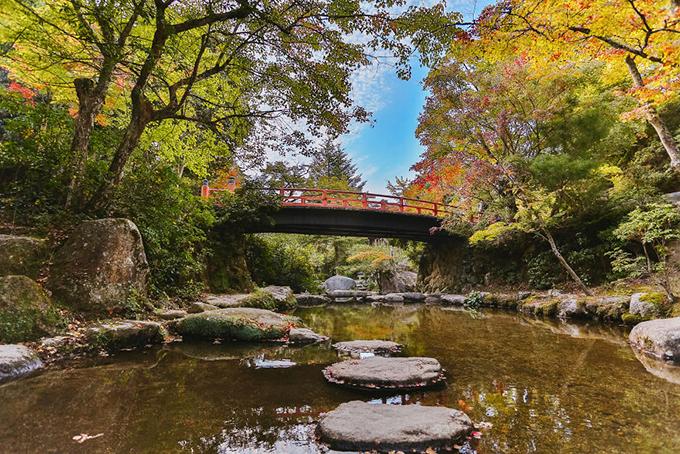 Hành trình nước Nhật trong 14 ngày khiến ai xem cũng muốn lên đường - 19