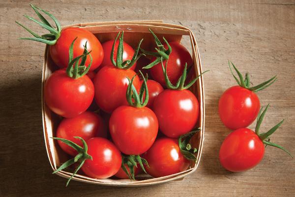 Một quả cà chua kích thước trung bình có thể cung cấp 1/2lượng vitamin C khuyến nghị sử dụng mỗi ngày.Đây cũng là nguồn cung cấp vitamin C, K, kali và sắt tuyệt vời cho cơ thể.