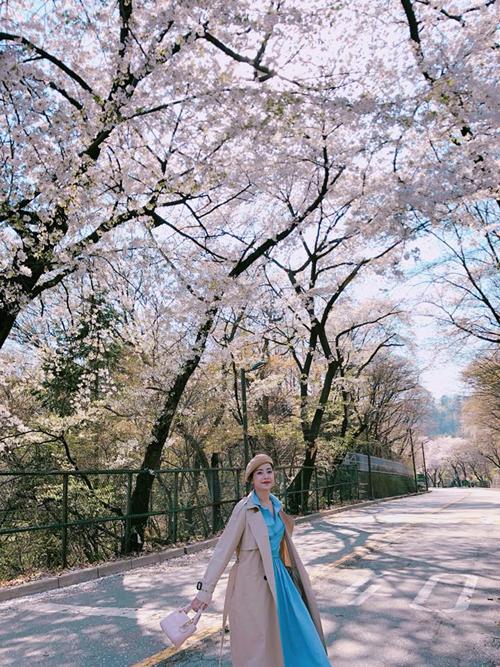 Theo chân Chi Pu ngắm con đường hoa anh đào đẹp ngất ngây ở Seoul - 2