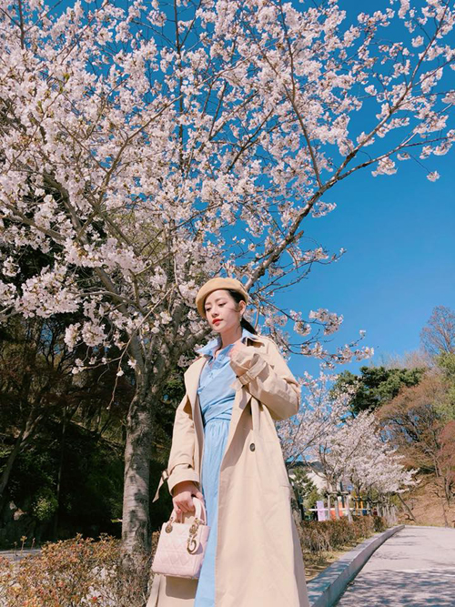 Theo chân Chi Pu ngắm con đường hoa anh đào đẹp ngất ngây ở Seoul - 4