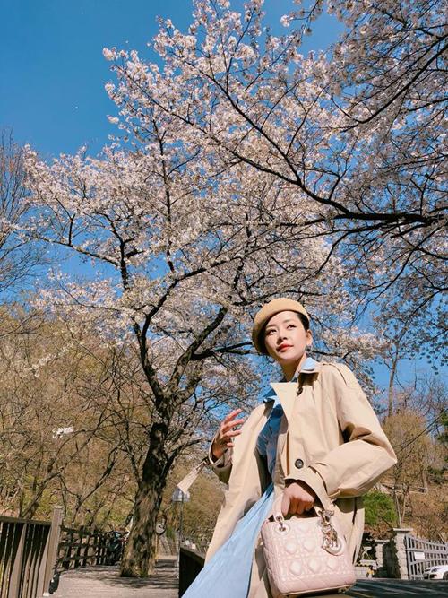 Theo chân Chi Pu ngắm con đường hoa anh đào đẹp ngất ngây ở Seoul - 5