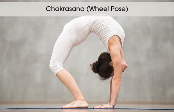 5 tư thế yoga giúp đánh tan bọng mắt - ảnh 3