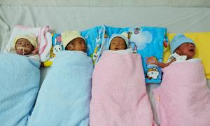 Thai phụ Nghệ An mang tứ thai vào Sài Gòn vượt cạn