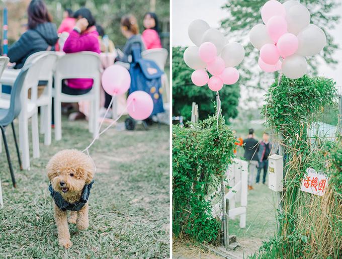 Bóng bay màu hồng, trắng được tận dụng để trang trí không gian tiệc cưới.