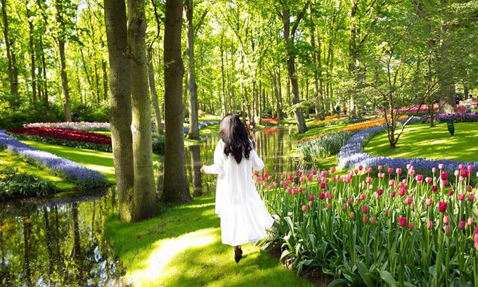 Sao Việt nô nức tới Hà Lan ngắm mùa hoa tulip đẹp nao lòng - 10