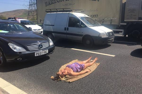 Lily thản nhiên nằm giữa đường tắm nắng trong khi chờ hết tắc đường. Ảnh:Mercury Press & Media