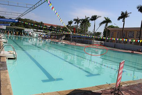 Thiếu phụ ở Vinh bất tỉnh vì bể bơi rò điện - ảnh 1