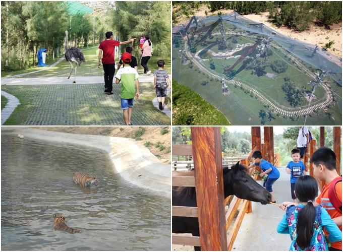 Giải nhiệt mùa hè ở 6 công viên chủ đề từ Bắc vào Nam - 2