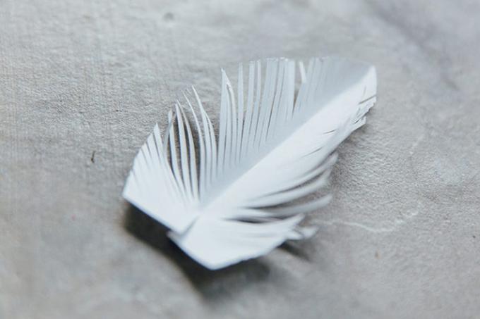 Bước 8: Cắt một đường dài 1,5 - 2 cm ở mép dưới cùng của chiếc lông vũ. Kéo các dải tua rua sao cho kết cấu thật tự nhiên.