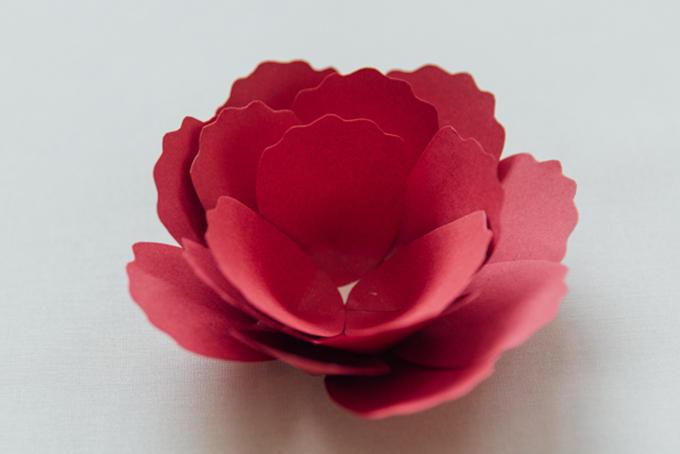 Bước 7&8: Tiếp tục thêm dần cánh hoa tới khi hoàn chỉnh, nhớ rằng các lớp trong cùng sẽ cao hơn lớp bên ngoài.
