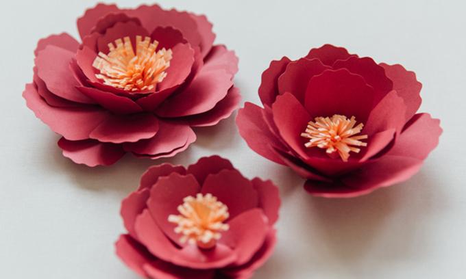 Hoa mẫu đơn khi đã được hoàn thiện. Bạn có thể tạo ra các kích cỡ khác nhau của hoa mẫu đơn để phần trang trí tiệc cưới thêm đặc sắc.