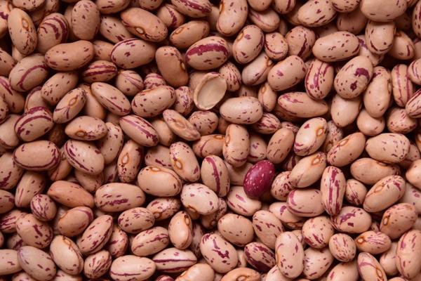 Thực phẩm gây đầy bụng  Các loại đậu, ngũ cốc, hành tây, các chế phẩm từ sữa có thể khiến bạn bị đầy hơi, chướng bụng. Các thực phẩm này rất dễ lên men bởi các vi khuẩn trong hệ tiêu hóa. Quá trình này sẽ sản sinh ra khí ga và khiến cho bạn có cảm giác đầy bụng,