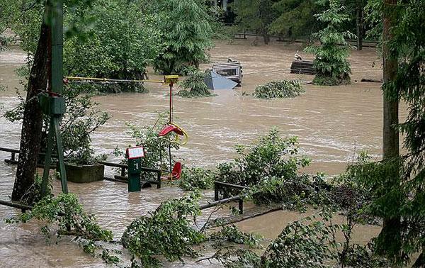 Đàn hổ báo xổng chuồng sau khi vườn thú bị ngập