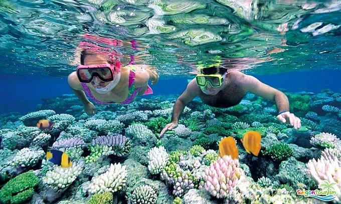 Đảo ngọc dải san hô, hải quỳ độc đáo cho du khách khám phá và trải nghiệm.