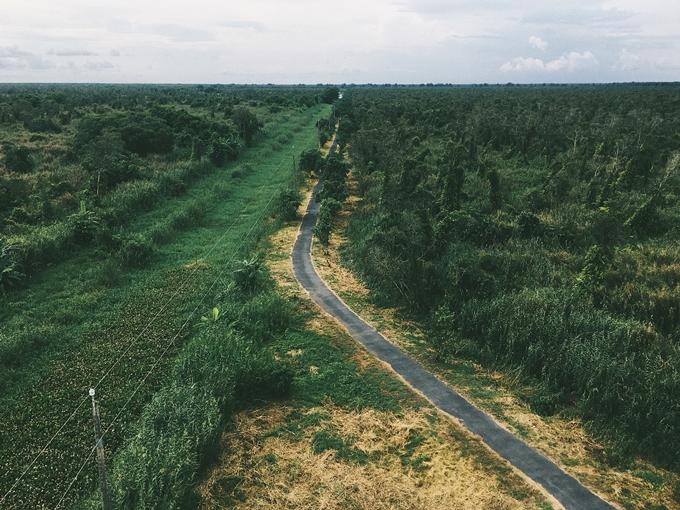 Trốn nóng ở rừng U Minh Hạ, cực nam Tổ quốc