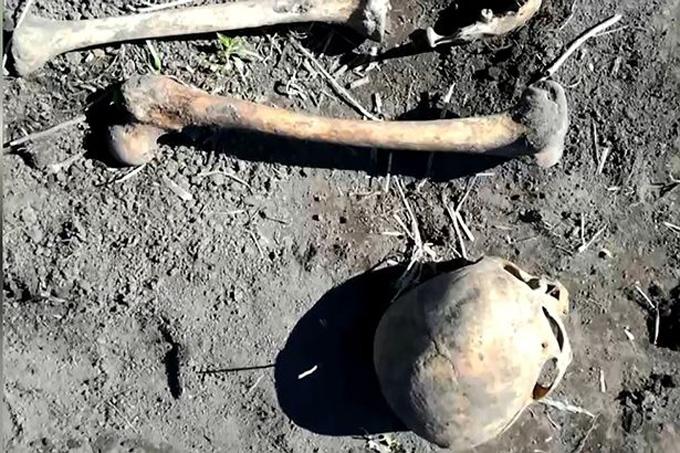 Đào đất trồng khoai, phát hiện bộ xương chồng cũ của vợ - ảnh 1