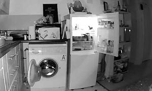 Chủ nhà lắp camera phát hiện tủ lạnh và máy giặt 'tự mở cửa' mỗi đêm