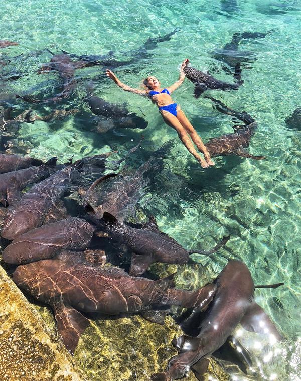 Katarina Zarutskie bị cá mập cắn tay ở Bahamas.