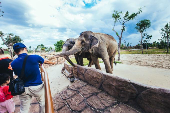 Công viên bảo tồn động vật hoang dã trên sông tại Quảng Nam - ảnh 3