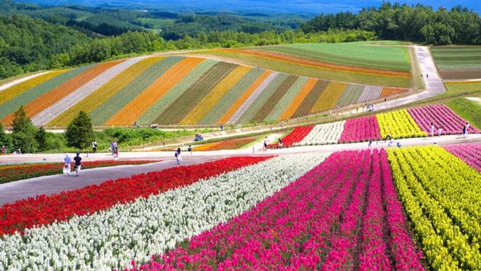 5 con đường đẹp nhất Châu Á - 1
