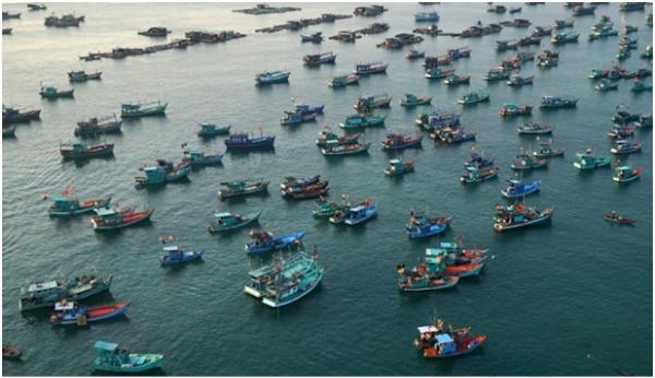 Biển Phú Quốc luôn tràn ngập tàu thuyền đánh cá, được người dân ví von như một trận địa,