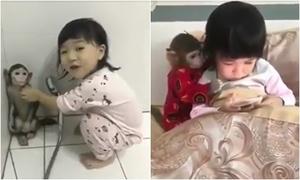 Tình bạn không tách rời của bé gái Trung Quốc và chú khỉ nhỏ