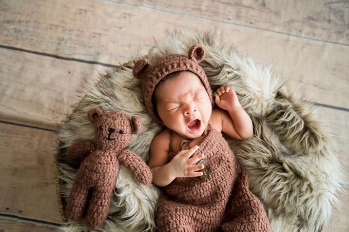 Bé Koi có nhiều điểm giống bố và rất bụ bẫm khi tròn 1 tháng tuổi.