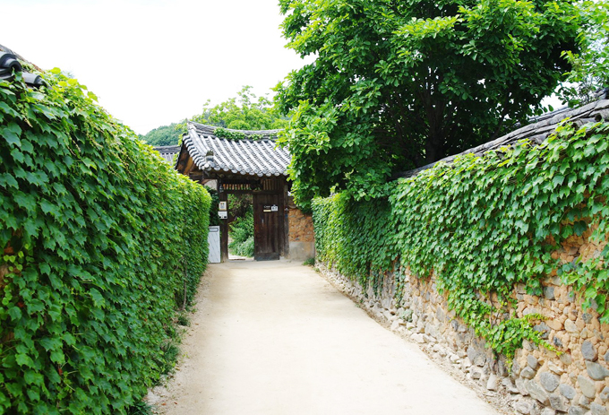 Về thăm quê hương HLV Park Hang Seo - 5