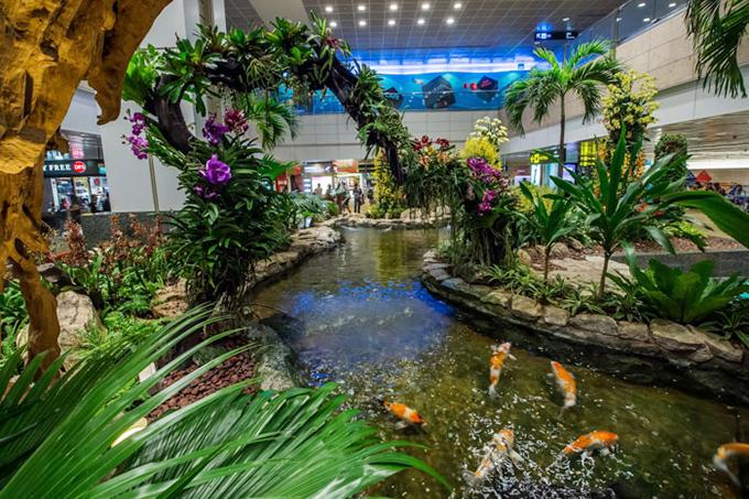Thậm chí, bạn còn tìm thấy một hồ cá Koi với những chú cá sặc sỡ tung tăng bơi lội giữa không gian xanh.
