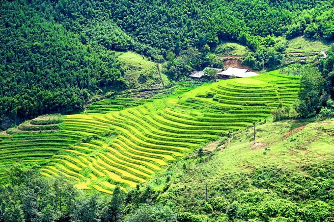 Ngay từ điểm khởi đầu các xã Lao Chải, Tả Van, Hầu Thào, Bản Hồ, San Sả Hồ... du khách đã thấy những thửa ruộng bậc thang uốn quanh như sóng lượn dưới sâu thung lũng.