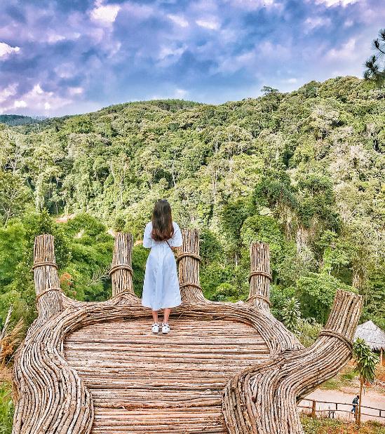 Khu du lịch bỗng được lùng sục vì cây cô đơn bơ vơ giữa trời - 1