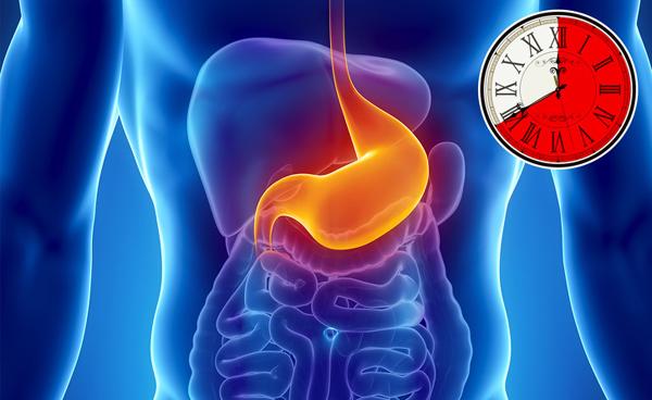 Thực phẩm tiêu hóa chậm giúp bạn no lâu hơn.