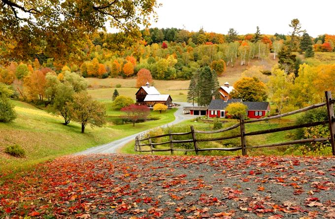 Những trải nghiệm mùa thu ở Tây