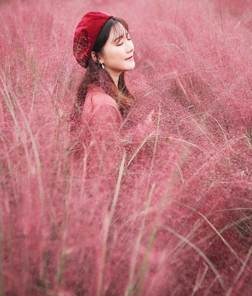 Cánh đồng cỏ hồng ở Hàn Quốc khiến Thúy Vân mê mẩn sống ảo - 10