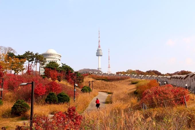 Gợi ý 10 điểm miễn phí cho người lần đầu du lịch Seoul mùa thu