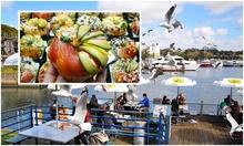 Chợ cá ở Australia nơi du khách dùng bữa chung với chim
