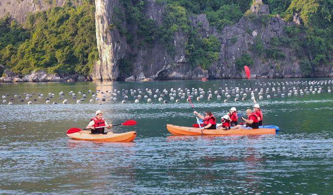 Để cả nhà có thể thư giãn thoải mái và ngủ đêm trên vịnh Hạ Long, chàng MC đã đặt du thuyền 5 sao, tổ chức cho các thành viên chèo thuyền Kayak,tắm biển.
