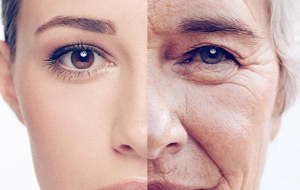 Lão hóa Ngồi lâu khiến máu huyết không lưu thông, da dẻ kém săn chắc. Ánh sáng xanh từ màn hình máy tính cũng khiến làn da lão hóa nhanh hơn.