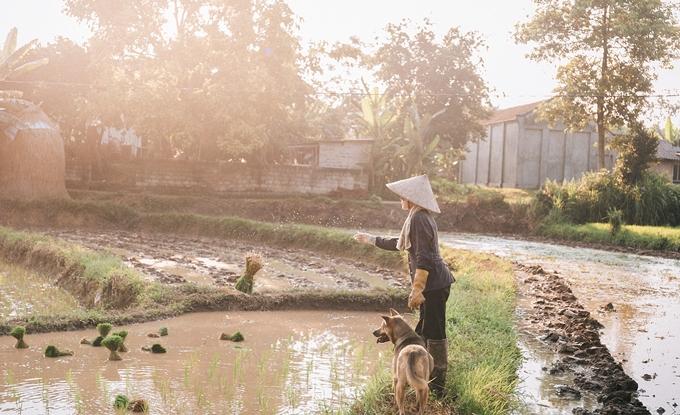 Người mẹ nông dân trong mắt con trai nhiếp ảnh gia - ảnh 9