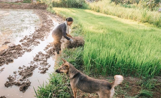 Người mẹ nông dân trong mắt con trai nhiếp ảnh gia - ảnh 10