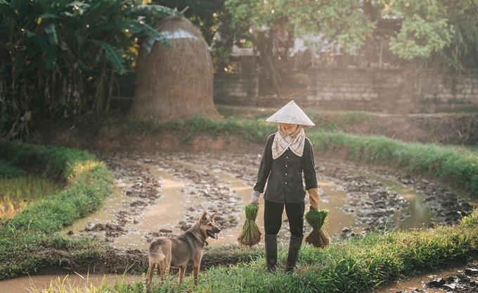 Người mẹ nông dân trong mắt con trai nhiếp ảnh gia - ảnh 11
