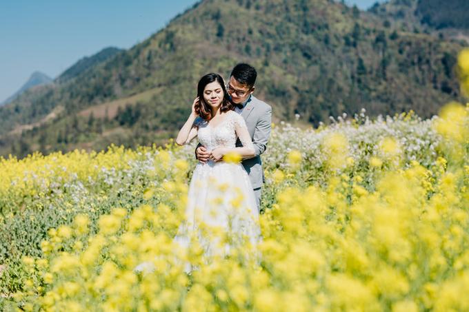Ảnh cưới 8 triệu đồng ở Sapa của cặp chung trường