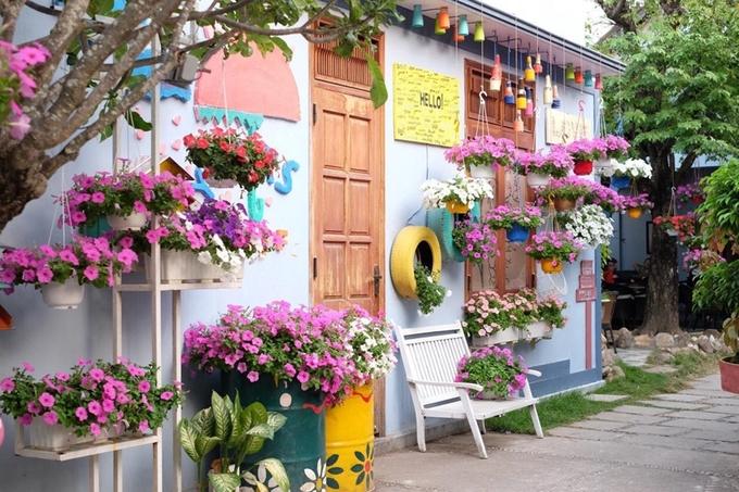 Tiệm cà phê đầy hoa dạ yến thảo nơi phố núi
